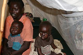 vom Sudan malaria